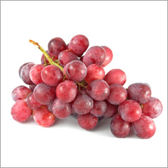 Resveratrol, brain and diabetes