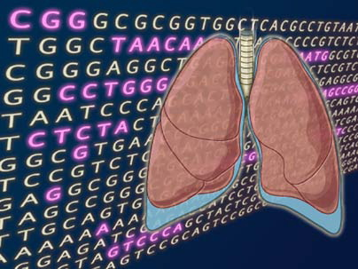 Genomic Landscape Of Lung Cancer