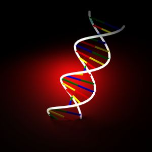 Nanoparticles causes DNA damage in mice