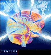 Stress may help cancer cells resist treatment