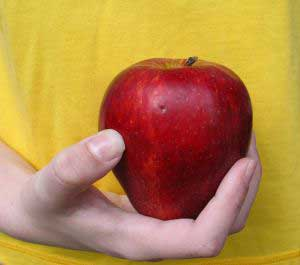 Eating apples and fish during pregnancy