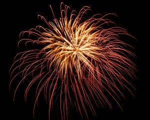 fireworks that spark seizures