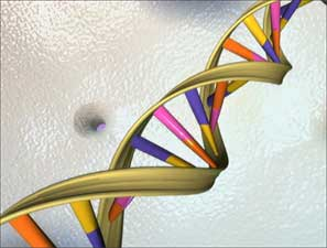 Links between DNA damage and breast cancer