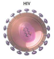 Major Strategic Breakthrough In Controling The Aids Virus