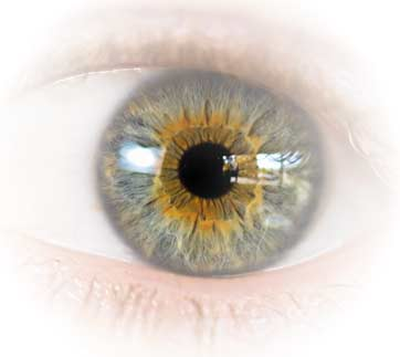 Clinical Trial for New Ocular Prosthetic Device