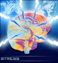 Mental Stress May Raise Cholesterol Levels